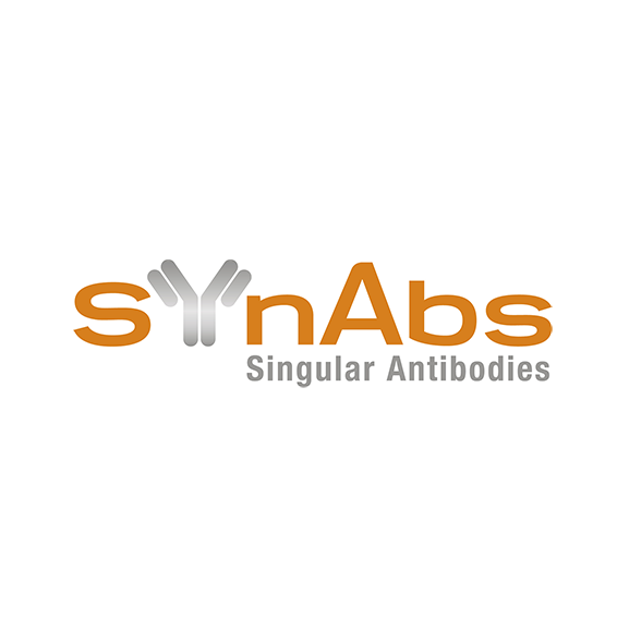 SynAbs