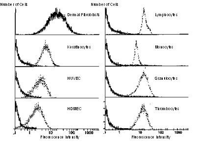 00982_Abb1_Flow-Cytometry-Reactivity-of-anti-CD90-clone-AS02