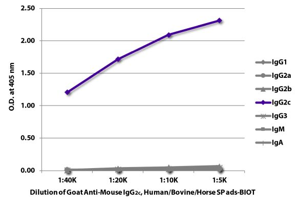 Abbildung: Ziege IgG anti-Maus IgG2c (Fc)-Biotin, MinX Hu,Bo,Ho