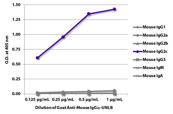 Abbildung: Ziege IgG anti-Maus IgG2c (Fc)-unkonj., MinX keine