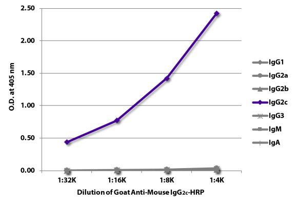 Abbildung: Ziege IgG anti-Maus IgG2c (Fc)-HRPO, MinX keine