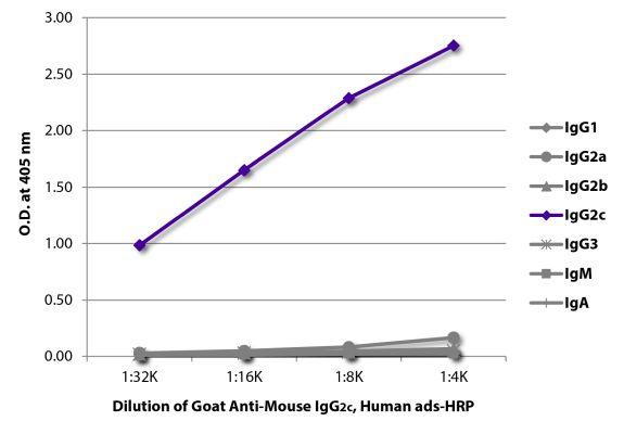 Abbildung: Ziege IgG anti-Maus IgG2c (Fc)-HRPO, MinX Hu