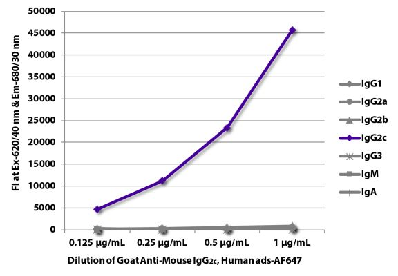Abbildung: Ziege IgG anti-Maus IgG2c (Fc)-Alexa Fluor 647, MinX Hu