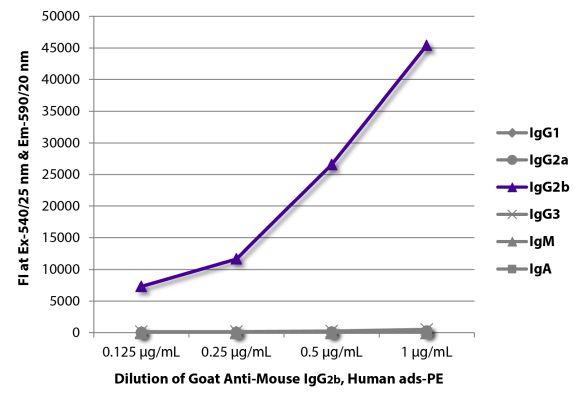 Abbildung: Ziege IgG anti-Maus IgG2b (Fc)-RPE, MinX Hu