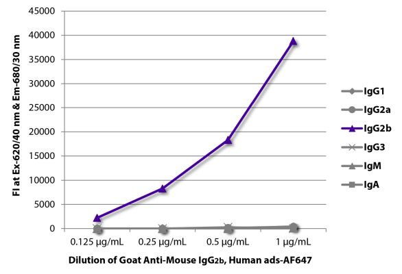 Abbildung: Ziege IgG anti-Maus IgG2b (Fc)-Alexa Fluor 647, MinX Hu
