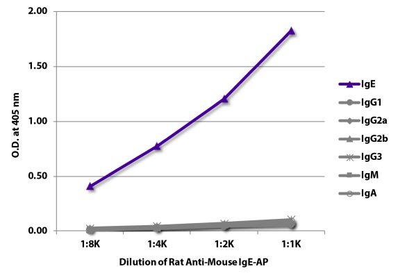 Abbildung: Ratte IgG anti-Maus IgE-Alk. Phos., MinX keine