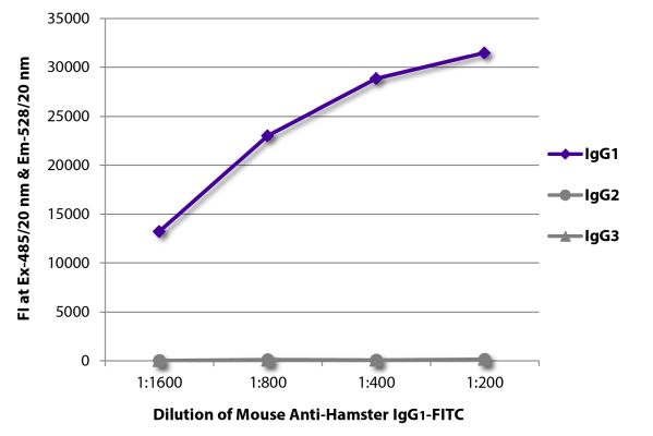 Abbildung: Maus IgG anti-Hamster armenisch IgG1 (Fc)-FITC, MinX keine