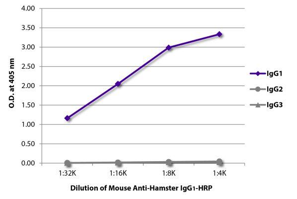 Abbildung: Maus IgG anti-Hamster armenisch IgG1 (Fc)-HRPO, MinX keine