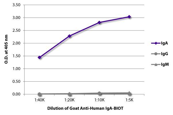 Abbildung: Ziege IgG anti-Human IgA-Biotin, MinX keine