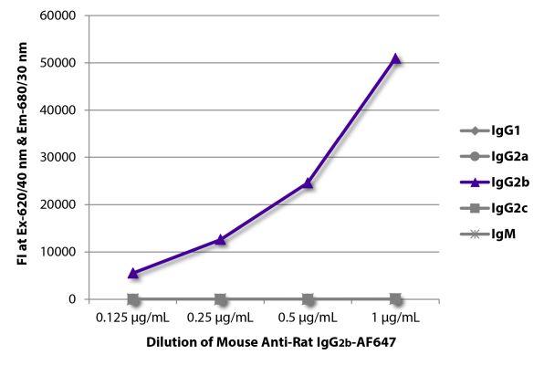 Abbildung: Maus IgG anti-Ratte IgG2b (Fc)-Alexa Fluor 647, MinX keine