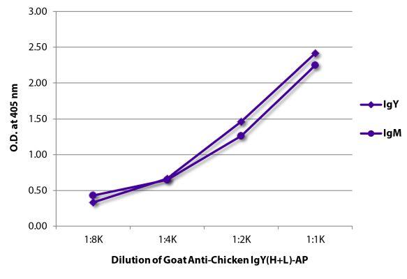 Abbildung: Ziege IgG anti-Huhn IgY (H+L)-Alk. Phos., MinX keine