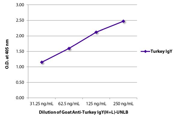 Abbildung: Ziege IgG anti-Truthahn IgY (H+L)-unkonj., MinX keine