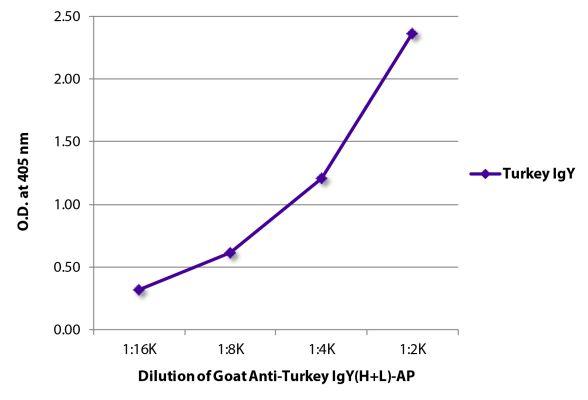 Abbildung: Ziege IgG anti-Truthahn IgY (H+L)-Alk. Phos., MinX keine