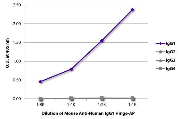 Abbildung: Maus IgG anti-Human IgG1 (Hinge)-Alk. Phos., MinX keine