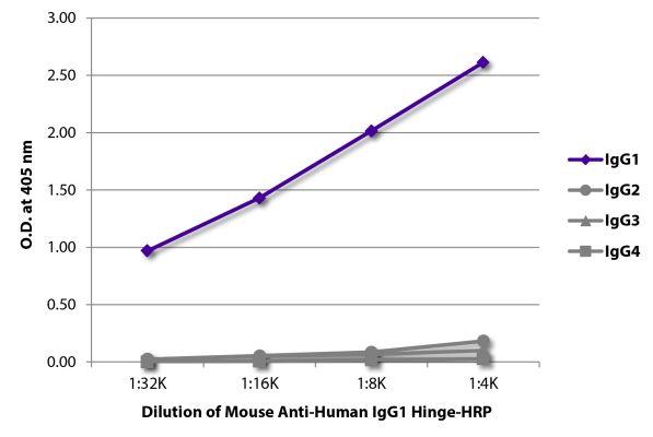 Abbildung: Maus IgG anti-Human IgG1 (Hinge)-HRPO, MinX keine