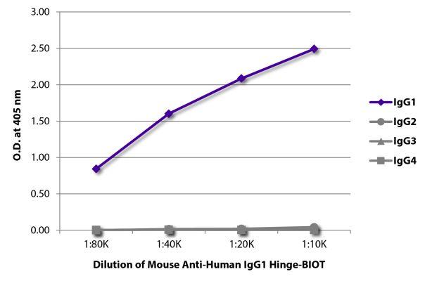 Abbildung: Maus IgG anti-Human IgG1 (Hinge)-Biotin, MinX keine