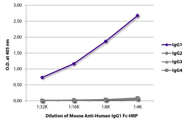 Abbildung: Maus IgG anti-Human IgG1 (Fc)-HRPO, MinX keine