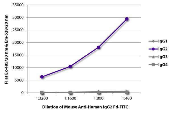 Abbildung: Maus IgG anti-Human IgG2 (Fd)-FITC, MinX keine