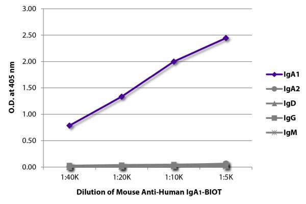 Abbildung: Maus IgG anti-Human IgA1-Biotin, MinX keine