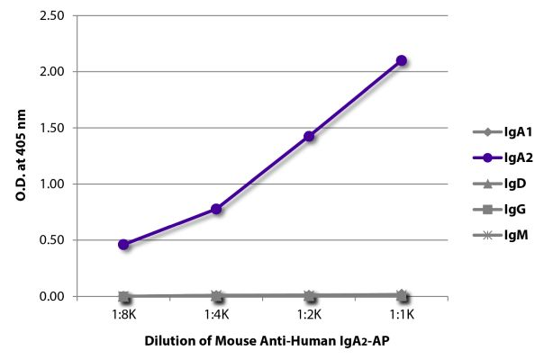 Abbildung: Maus IgG anti-Human IgA2-Alk. Phos., MinX keine