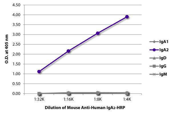 Abbildung: Maus IgG anti-Human IgA2-HRPO, MinX keine