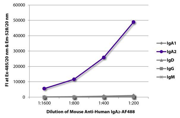 Abbildung: Maus IgG anti-Human IgA2-Alexa Fluor 488, MinX keine