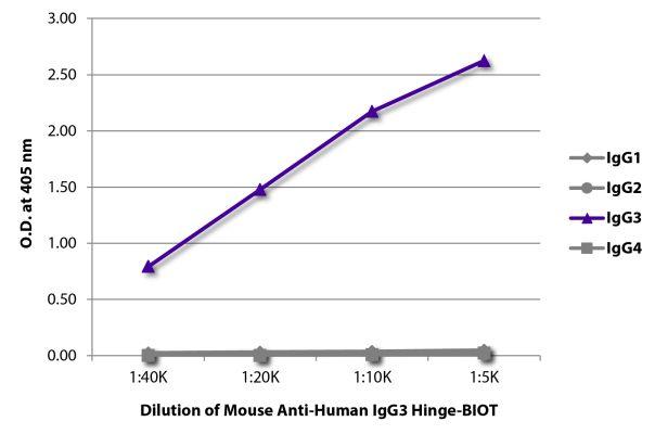 Abbildung: Maus IgG anti-Human IgG3 (hinge)-Biotin, MinX keine