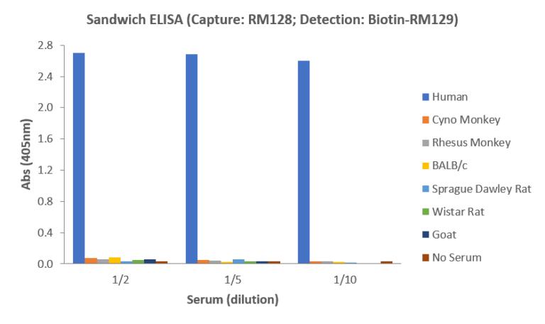Human IgA ELISA Matched Antibody Pair (RM128/RM129)