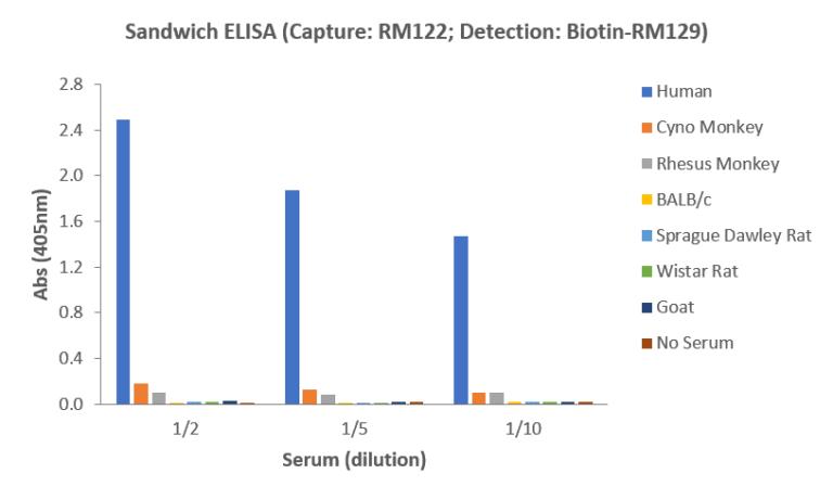 Human IgE ELISA Matched Antibody Pair (RM122/RM129)