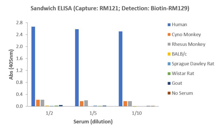 Human IgM ELISA Matched Antibody Pair (RM121/RM129)