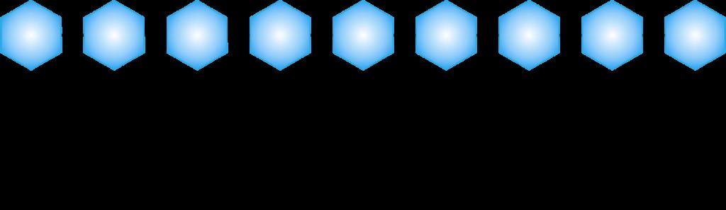 BV_optisches-Segmente_deu