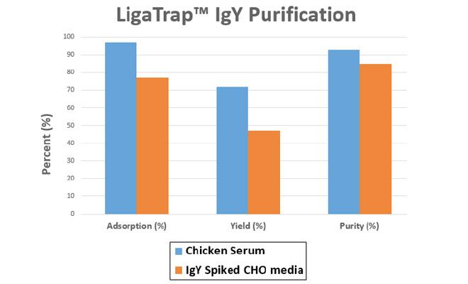 Chicken IgY Purification - LigaTrap