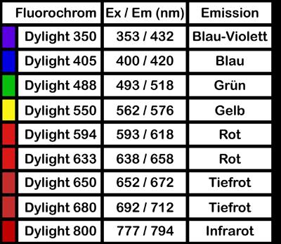 Dylight Fluorochrome von ImmunoReagents