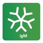 IgM Molekül
